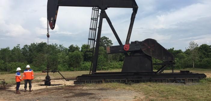 pix - Bass Oil nodding donkey onshore Indonesian fields (2)